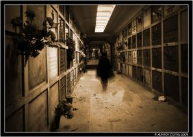 A walk in the crypt... by slipandslidesuicide