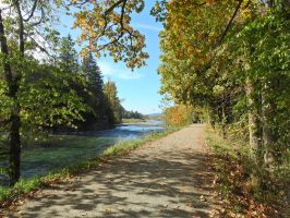 Vedder river trail 10/16/2015~3 by Matthew-Fuller