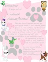 Canterlot Animal Shelter by Rainbow-Pastel