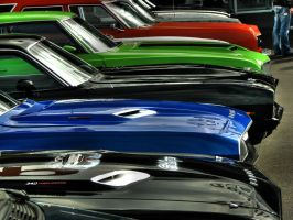 colors and muscles by AmericanMuscle