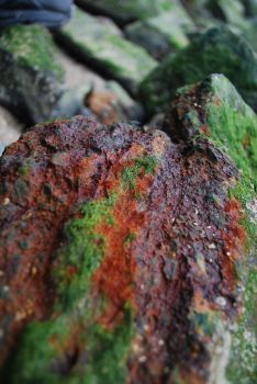 Rusted Rock by Crush-designs
