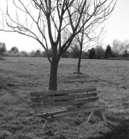 Deserted Bench by Nahima