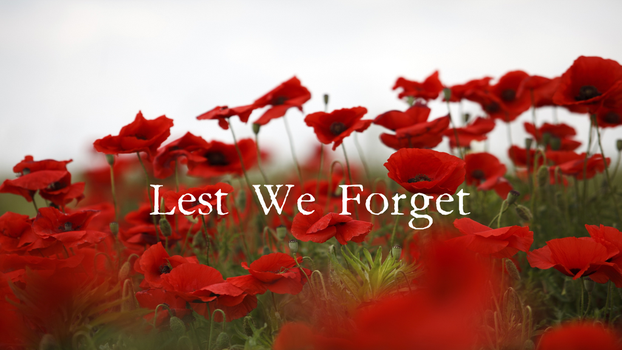 Lest We Forget by SERDD