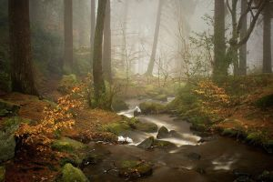 Wyming Brook III by Mohain