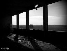Left to decay by Poljak01