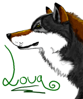 ID May 2010 by LouaWolf