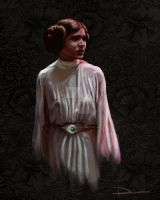 Princess Leia color study by dsilvabarred