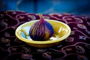 The Illustrious Fig by planet0