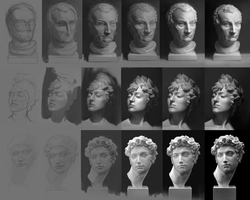 plaster head study by OtherDistortion