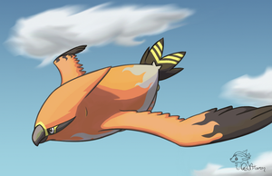 Soaring by GoldFlareon