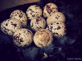 Spring Eggs by Poetic-justice88