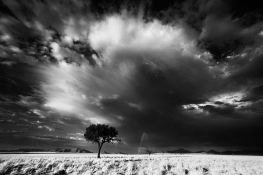 The Anvil by hougaard