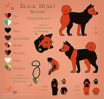 Black Heart Ref Sheet 2014 by Jenaiify