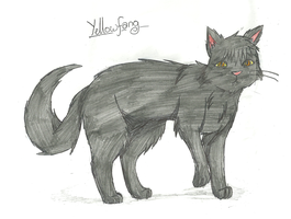 Yellowfang by SkyBlueArts