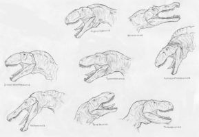 Theropod Head Study by tmac1kobe8vc15