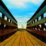 Obstination by smaccks