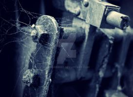Spiders Web by Jordan2002