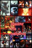 Shadow the Hedgehog (collage 2) by PrincessEmerald7