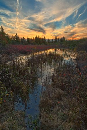 Autumn Dolly Sods Sunset by somadjinn