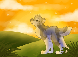 .:Glowing Gold:. by LouPup