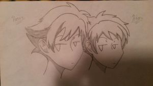 Hikaru and Kaoru, the Hitachiin Twins by cartoonlover1228