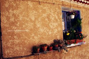the window2. by kamilla-b