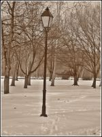 Park in winter - Osijek by SeiMissTake