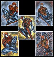 Scarlet Spider Ben Reilly Sketch Cards by AHochrein2010