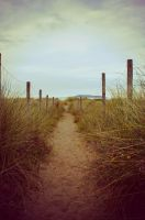 The path by averel-a