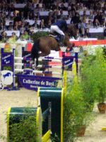 Horse Jumping 12 by exatitude