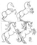 Draw a Horse 2 by Diana-Huang