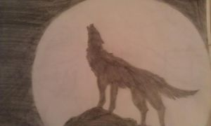 Wolf by lovepastatodeath