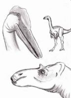 dinotopia sketch 2 by NickoTheArtist