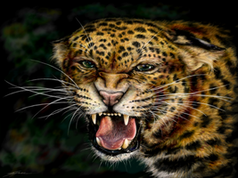 Snarling Leopard by Eenuh