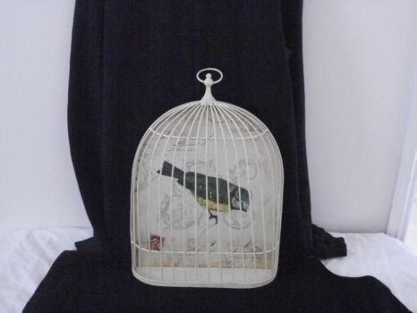 french bird cage stock 5 by erratic-stock