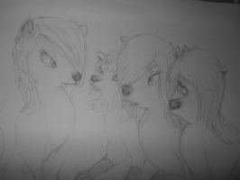 Alpha and Gamma/ Roset, Amora, Cathrin and Eva by TheWarriorDogs