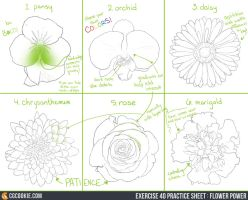 Exercise 40 Practice Sheet: Flower Power by ConceptCookie