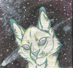 Star Cat by pheonix-conure