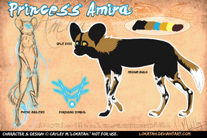 Amira 2013 Reference Sheet by Aviseya