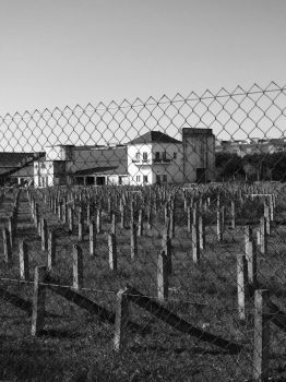 concentration camp . by Conguita