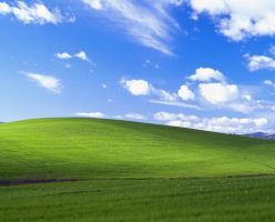 600DPI Windows XP Bliss by knux-kiba-fan254
