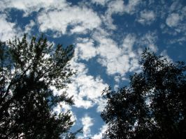 Blue Sky Day by PDWeasel