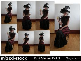 Dark Mansion Pack 5 by mizzd-stock