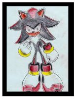 Shadow The Dark Hedgehog by funkyjeremi