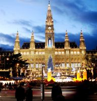 Vienna Christmas Market by turqchE