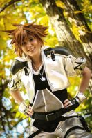 KH 2 - Sora Final Form: Silver and Gold by Evil-Uke-Sora