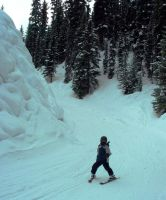 Beginner skier skis the cayon at sunshine by marriedwithkids