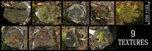 Tree Stump Texture Pack - 1 by AGF81