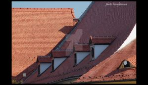 roofing by liviugherman