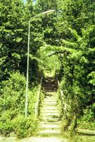 Green stairs by TLO-Photography